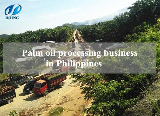 Setting up a palm oil mill plant in Philippines is a good choice