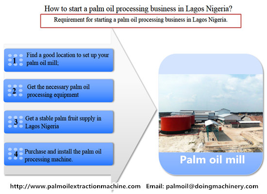 How to start a palm oil processing business in Lagos Nigeria?