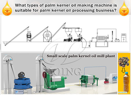 What types of palm kernel oil making machine is suitable for palm kernel oil processing business?