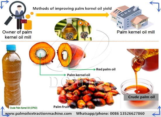 What are the methods of improving palm kernel oil yield in palm kernel oil mill factory?