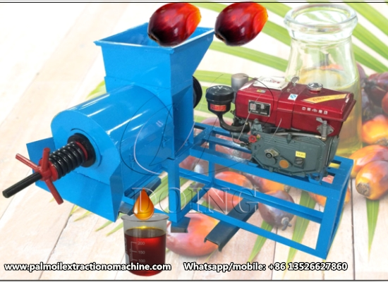 Home use palm oil press machine working video and customer feedback