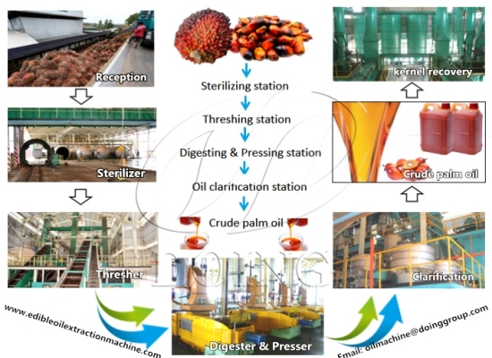 Palm oil processing machines and their price