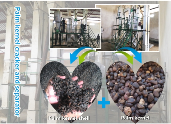 Production video of Nigerian customer's palm kernel cracking and separating machine