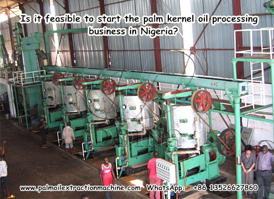 Is it feasible to start the palm kernel oil processing business in Nigeria?