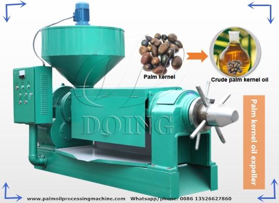 500kg/h palm kernel oil expeller machine, palm kernel oil extraction machine video