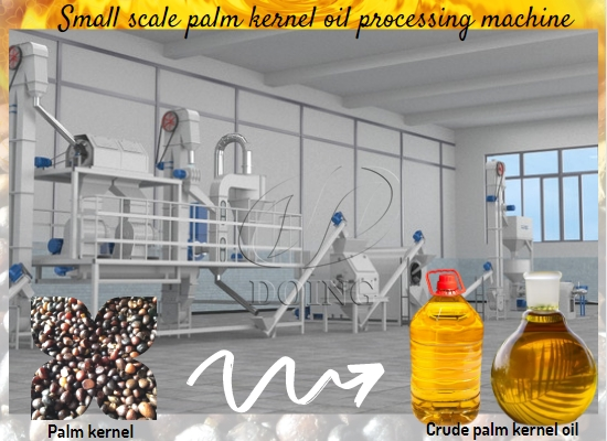 How to make palm kernel oil in factory? What machines are needed?
